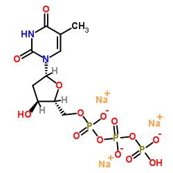Thymidine 5'-Triphosphate Sodium Salt