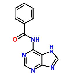 N-(5H-Purin-6-yl)benzamide