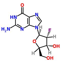 2-アミノ-9-[(2R、3R、4R、5R)-3-フルオロ-4-ヒドロキシ-5-(ヒドロキシメチル)オキソラン-2-イル] -3H-プリン-6-オン