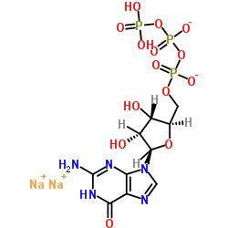 Guanosine 5-triphosphate,disodium salt hydrate