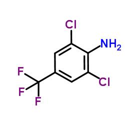 4-Amino-3,5-dichlorobenzotrifluoride