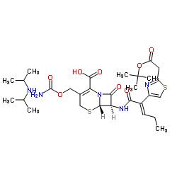 (6R,7R)-7-[[(Z)-2-(2-t-Butoxycarbonylaminothiazol-4-yl)-2- pentenoyl]amino]-3-aminocarbonyl-oxymethyl-8-oxo-5-thia-1- azabicylo[4.2.0]oct-2-ene-2-carboxylic acid diisopropylamine salt