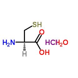 L-システインHCL H2O