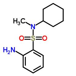 2-Amino-N-cyclohexyl-N-methylbenzenesulfonamide