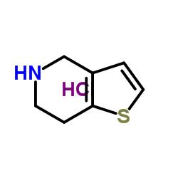 4,5,6,7-tetrahydrothieno[3,2-c]pyridine,hydrochloride
