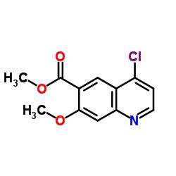 6-Quinolinecarboxylic acid, 4-chloro-7-methoxy-, methyl ester
