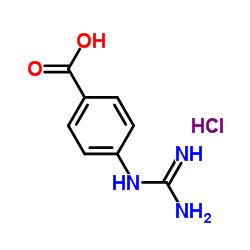 4-グアニジノ安息香酸塩酸塩