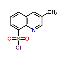 3-Methylquinoline-8-sulfonyl chloride