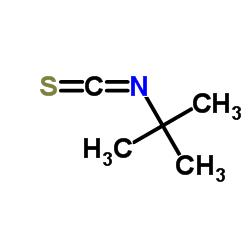 tert-Butyl isothiocyanate
