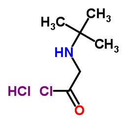 2-(tert-butylamino)acetyl chloride,hydrochloride