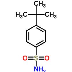 4-Tert-Butylbenzenesulfonamide