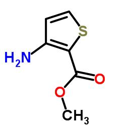 methyl 3-aminothiophene-2-carboxylate