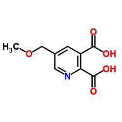 5-(Methoxymethyl)pyridine-2,3-dicarboxylic acid