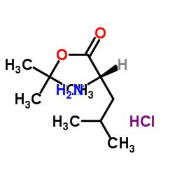 L-ロイシンtert-ブチルエステル塩酸塩