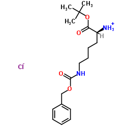 N'-Cbz-L-lysine tert-butyl ester hydrochloride
