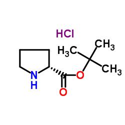 D-プロリンtert-ブチルエステル塩酸塩