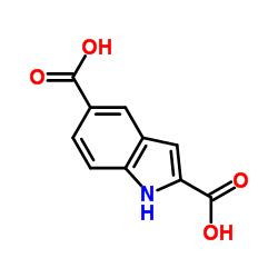 1H-indole-2,5-dicarboxylic acid