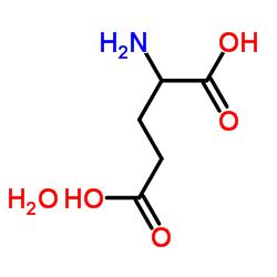 DL-Glutamic acid monohydrate