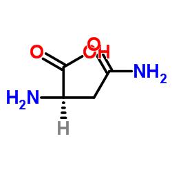 D-(-)-Asparagine monohydrate