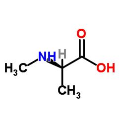N-Methyl-D-alanine