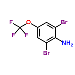 2,6-ジブロモ-4-(トリフルオロメトキシ)アニリン