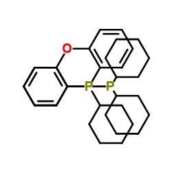dicyclohexyl-[2-(2-dicyclohexylphosphanylphenoxy)phenyl]phosphane