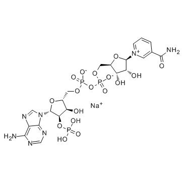 β-NADP-sodium salt